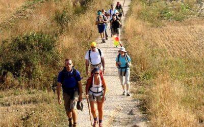 Dlaczego warto iść na Camino?
