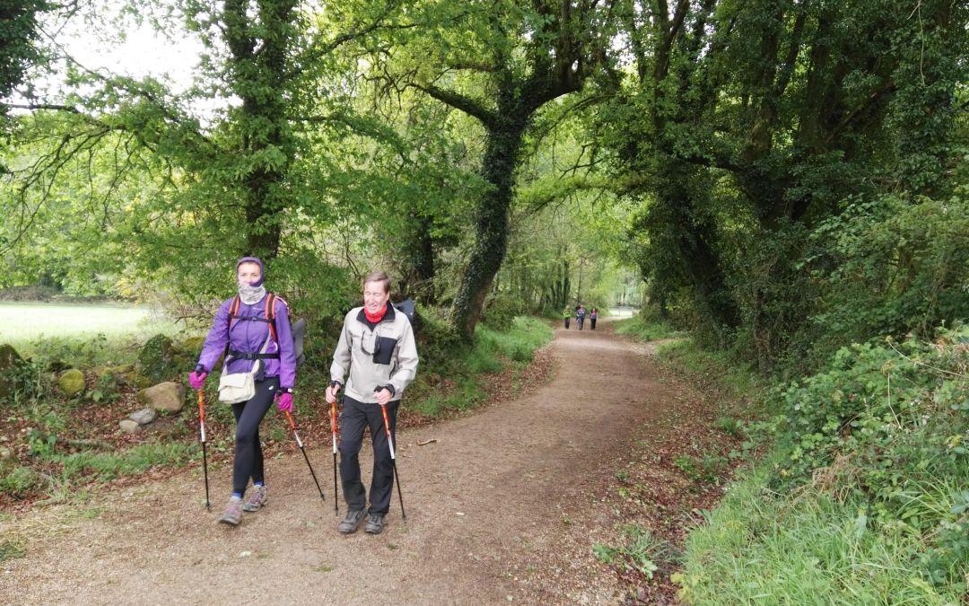 7 powodów dla których warto iść na Camino bez plecaka