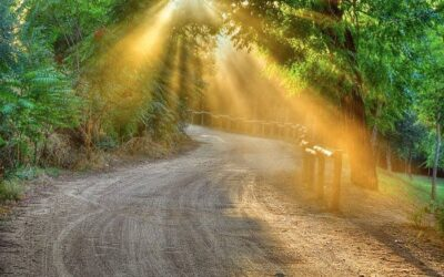 Ultreia! – Co oznacza to powitanie na Camino de Santiago