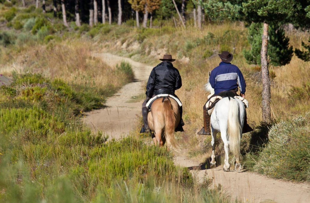 Camino de Santiago na koniu: Czego potrzebujesz?