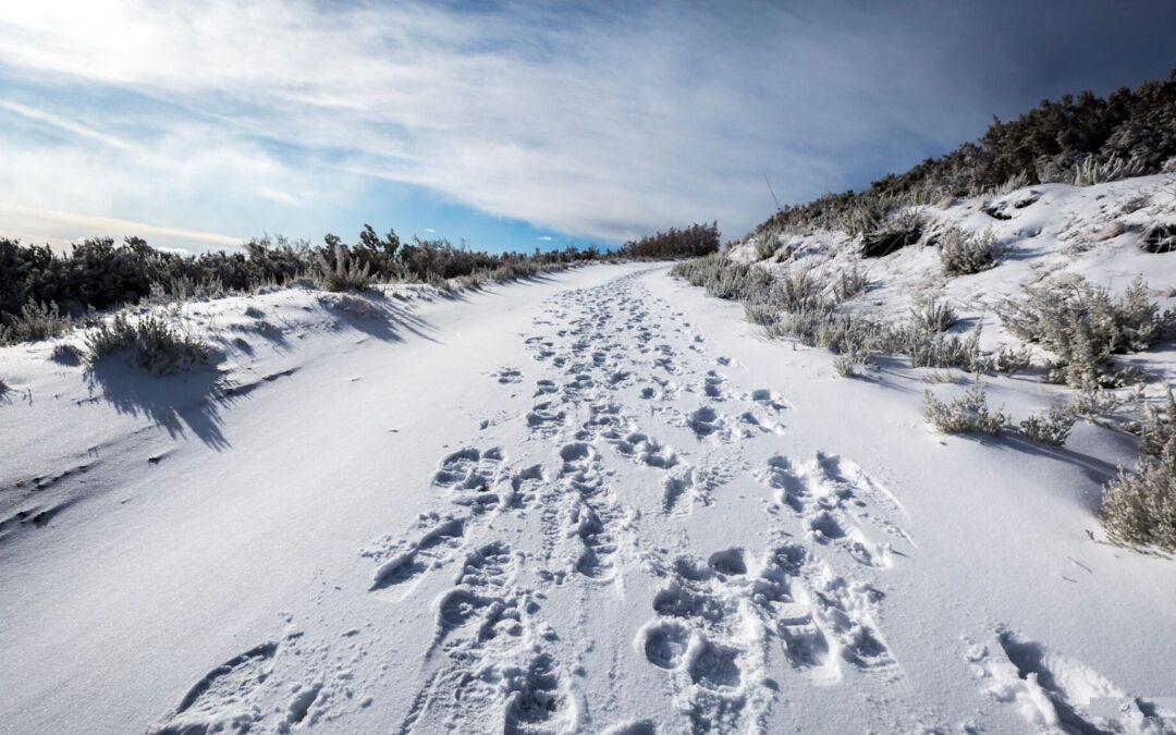 Camino w grudniu – czy to jest możliwe?